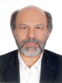 Picture1 (Prof. Dr.  Hamid Mirzadeh).jpg